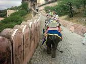 印度金三角之旅:印度 018.jpg