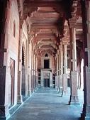 印度金三角之旅:印度 173.jpg