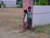 印度金三角之旅:印度1 022.jpg
