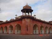 印度金三角之旅:印度 937.jpg