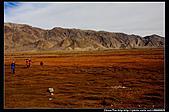 20081015  南彊大漠帕米爾十三日(石頭城)塔什庫爾干縣:6.塔縣塔什庫爾干河大草原.jpg