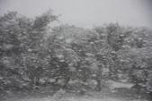 20121022  蜜月小鎮及戶外活動天堂--皇后鎮:15.121022 八號景觀公路 (11).jpg