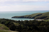 20121025 但尼丁奧塔哥半島上的黃眼企鵝保護區:27.121025 黃眼企鵝保護區 (23).jpg