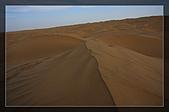 20081011  南彊大漠帕米爾/塔克拉瑪干大沙漠/輪台-塔中-民豐:6.塔克拉瑪干大沙漠 (44).jpg
