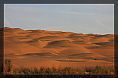 20081011  南彊大漠帕米爾/塔克拉瑪干大沙漠/輪台-塔中-民豐:6.塔克拉瑪干大沙漠 (74).jpg