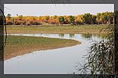 20081011  南彊大漠帕米爾/塔克拉瑪干大沙漠/輪台-塔中-民豐:3.輪台胡楊林公園 (80).jpg