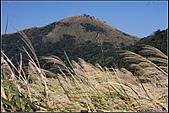 20090118  陽明山-大屯西峰下中正山:大屯西峰 059.jpg