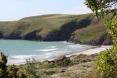 20121025 但尼丁奧塔哥半島上的黃眼企鵝保護區:27.121025 黃眼企鵝保護區 (24).jpg