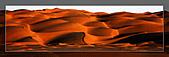20081011  南彊大漠帕米爾/塔克拉瑪干大沙漠/輪台-塔中-民豐:6.塔克拉瑪干大沙漠 (75).jpg