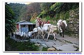 20091030  尼泊爾 安娜普娜山脈健行第三天:30尼泊爾 波拉卡安娜普娜山脈健行3 (77).jpg