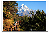 20091030  尼泊爾 安娜普娜山脈健行第三天:30尼泊爾 波拉卡安娜普娜山脈健行3 (103).jpg