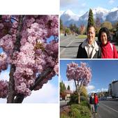 20121023 紐西蘭南島第一大湖—第阿納湖小鎮:相簿封面