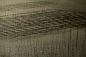 20160212 霞浦(三沙鎮小皓村觀灘塗、日落):5. 霞浦三沙鎮小皓村觀灘塗、日落 (18).JPG