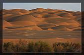 20081011  南彊大漠帕米爾/塔克拉瑪干大沙漠/輪台-塔中-民豐:6.塔克拉瑪干大沙漠 (76).jpg