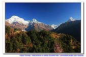 20091030  尼泊爾 安娜普娜山脈健行第三天:30尼泊爾 波拉卡安娜普娜山脈健行3 (79).jpg