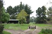 20121025  艾須柏頓kiwi 農家體驗:30.121025 艾須柏頓kiwi 農家體驗 (10).jpg