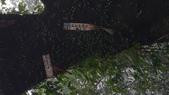 20190105    新北市阿里磅瀑布:IMAG6078.jpg