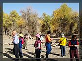 20081011  南彊大漠帕米爾/塔克拉瑪干大沙漠/輪台-塔中-民豐:3.輪台胡楊林公園 (22).JPG