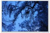 20111028四川省甘孜藏族自治區康定縣海螺溝(海螺溝一號大冰川):70.康定海螺溝第三營地飯店前廣場 (129).jpg