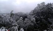 20160124  新北市三峽區逐鹿山追雪記:三峽熊空 (11).jpg