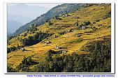 20091030  尼泊爾 安娜普娜山脈健行第三天:30尼泊爾 波拉卡安娜普娜山脈健行3 (114).jpg