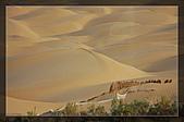 20081011  南彊大漠帕米爾/塔克拉瑪干大沙漠/輪台-塔中-民豐:6.塔克拉瑪干大沙漠 (6).jpg