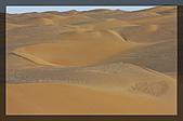 20081011  南彊大漠帕米爾/塔克拉瑪干大沙漠/輪台-塔中-民豐:6.塔克拉瑪干大沙漠 (49).jpg
