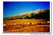 19990729 新疆北疆行13天:17.賽里木湖 (19).jpg