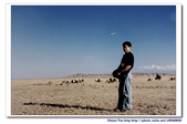 19990729 新疆北疆行13天:3.G312國道上 (5).jpg