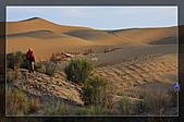 20081011  南彊大漠帕米爾/塔克拉瑪干大沙漠/輪台-塔中-民豐:6.塔克拉瑪干大沙漠 (67).jpg