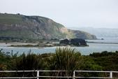 20121025 但尼丁奧塔哥半島上的黃眼企鵝保護區:27.121025 黃眼企鵝保護區 (17).jpg