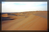 20081011  南彊大漠帕米爾/塔克拉瑪干大沙漠/輪台-塔中-民豐:6.塔克拉瑪干大沙漠 (52).jpg