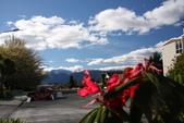 20121023 第阿納湖國家公園/螢火蟲洞之旅:22.121023 第阿納湖之旅 (8).JPG
