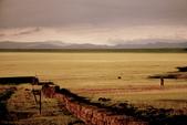 19990729 新疆北疆行13天:14.巴音布魯克天鵝湖 (2).jpg