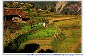 20091029  尼泊爾 安娜普娜山脈健行第二天:29尼泊爾 波拉卡安娜普娜山脈健行2 (87).jpg
