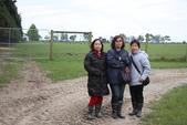 20121025  艾須柏頓kiwi 農家體驗:30.121025 艾須柏頓kiwi 農家體驗 (19).jpg