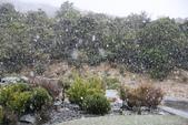 20121022 下雪了 瘋了 庫克山隱士蘆一群台灣客:13.121022庫克山隱士蘆 THE HERMITAGE AORAKI MOUNT COOK (21).jpg