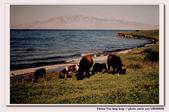 19990729 新疆北疆行13天:17.賽里木湖 (25).jpg
