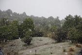 20121022 下雪了 瘋了 庫克山隱士蘆一群台灣客:13.121022庫克山隱士蘆 THE HERMITAGE AORAKI MOUNT COOK (10).jpg