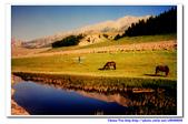 19990729 新疆北疆行13天:17.賽里木湖 (18).jpg