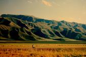 19990729 新疆北疆行13天:13.巴音布魯克大草原(1).jpg