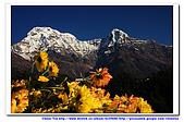 20091030  尼泊爾 安娜普娜山脈健行第三天:30尼泊爾 波拉卡安娜普娜山脈健行3 (87).jpg