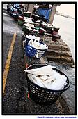 20100918澎湖馬公乘風破浪七美鄉戲水/機車遊島:13.澎湖 馬公菊島之星 (27).jpg