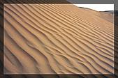 20081011  南彊大漠帕米爾/塔克拉瑪干大沙漠/輪台-塔中-民豐:6.塔克拉瑪干大沙漠 (34).jpg