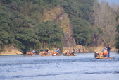 20160211    武夷山九曲溪:2.武夷山九曲溪竹排筏 (205).JPG