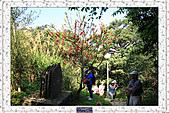 20110228 台北市文山區貓空杏花林:2.樟山寺步道 (4).jpg