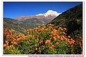20091029  尼泊爾 安娜普娜山脈健行第二天:29尼泊爾 波拉卡安娜普娜山脈健行2 (98).jpg