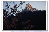 20091030  尼泊爾 安娜普娜山脈健行第三天:30尼泊爾 波拉卡安娜普娜山脈健行3 (31).jpg