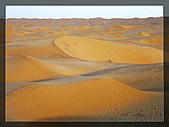 20081011  南彊大漠帕米爾/塔克拉瑪干大沙漠/輪台-塔中-民豐:6.塔克拉瑪干大沙漠 (60).jpg