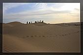 20081011  南彊大漠帕米爾/塔克拉瑪干大沙漠/輪台-塔中-民豐:6.塔克拉瑪干大沙漠 (35).jpg